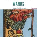 King of Wands (Reversed): love, money, profession, health, spirituality