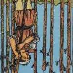 Nine of Wands (Reversed): love, money, profession, health, spirituality